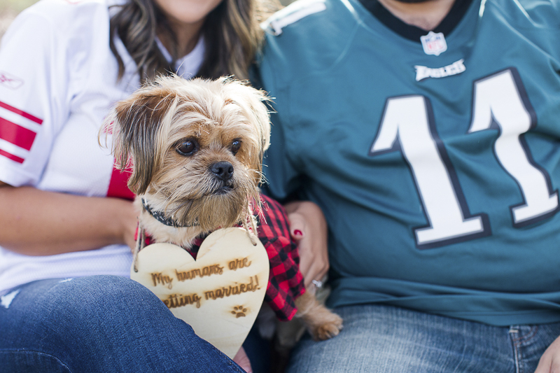 adorable small dog wearing buffalo check shirt and sign | ©Limelight Entertainment Photography | dog friendly engagement session