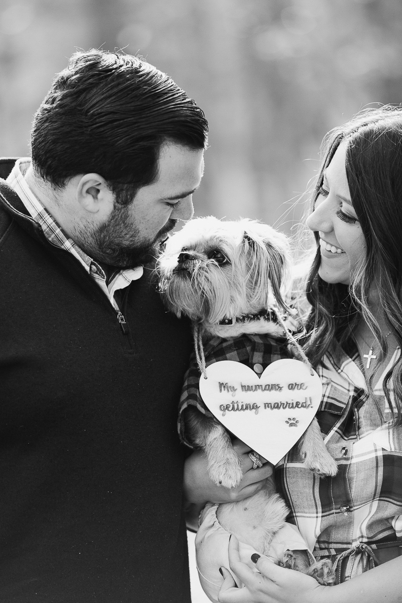 man's best friend, creative ideas for engagement photos with a dog, ©Limelight Entertainment Photography | dog friendly engagement session