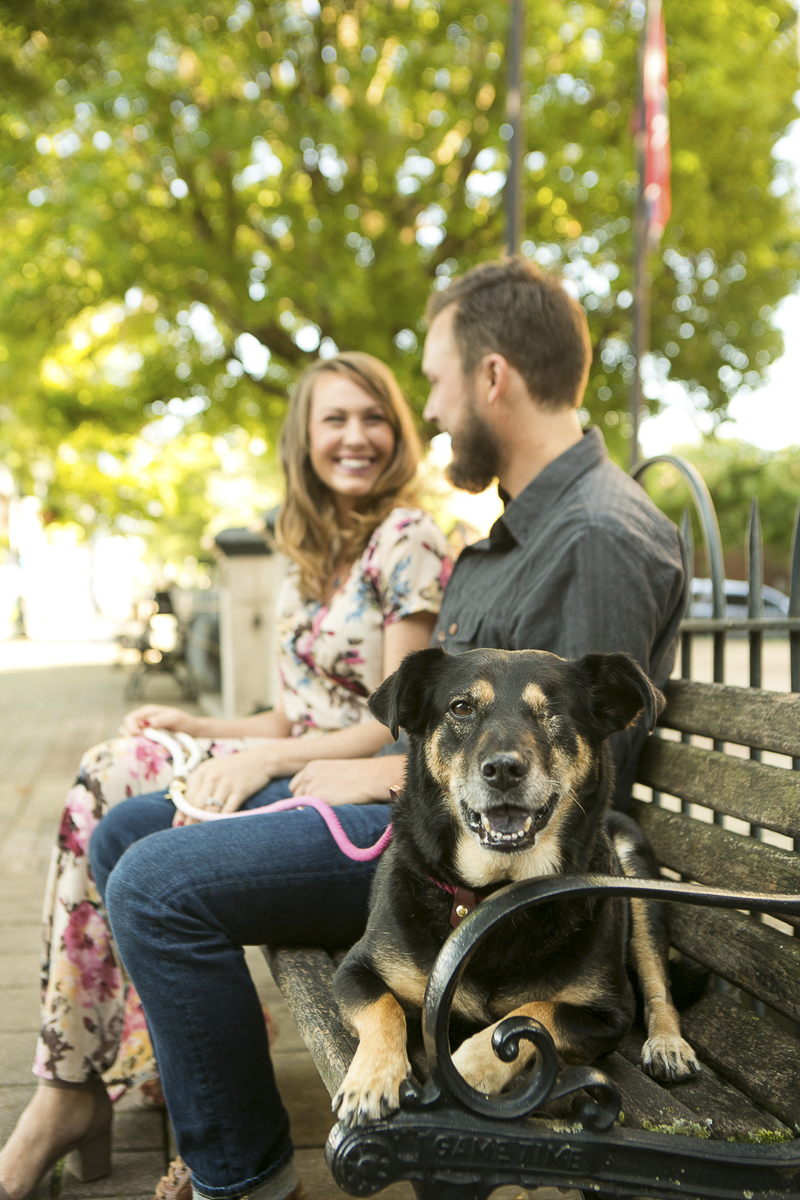 couple and their dog sitting on bench | Nashville pet photographer, Mandy Whitley Photography