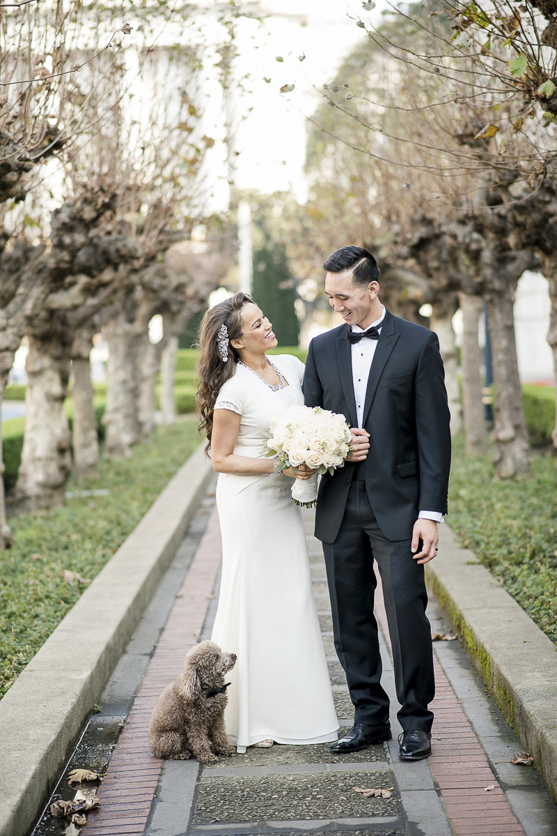 including dogs in wedding | ©Holly D Photography | San Francisco dog friendly wedding photography