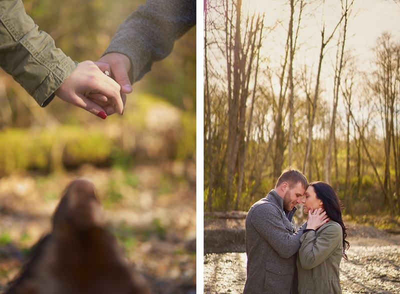dog looking up at couple holding hands, fall engagement photo session