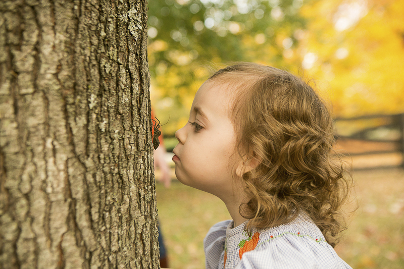 little girl watching bug crawl on tree | ©Mandy Whitley Photography