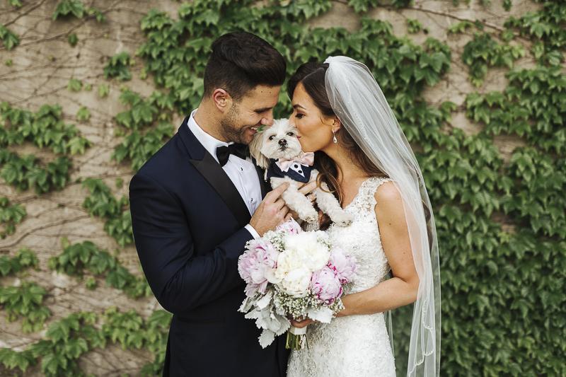 Morkie, bride, groom pet-friendly wedding ©Mioara Dragan Photography