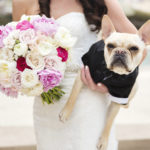 Best (Wedding) Dog:  Riggins the French Bulldog
