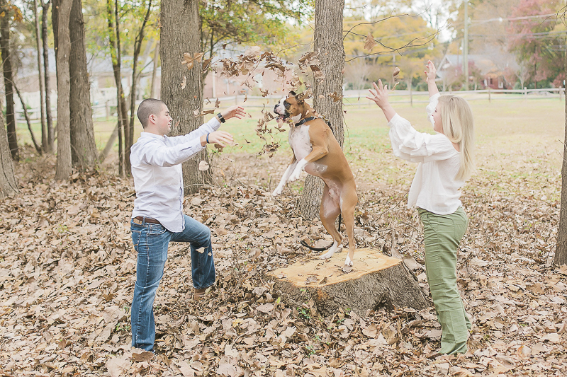Boxer catching leaves, ©Casey Hendrickson Photography | creative ways to include the dog in engagement session