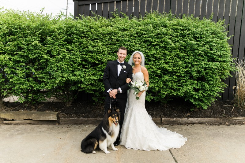bride, groom, and dog | ©Steven Dray Images | Pittsburgh dog friendly wedding