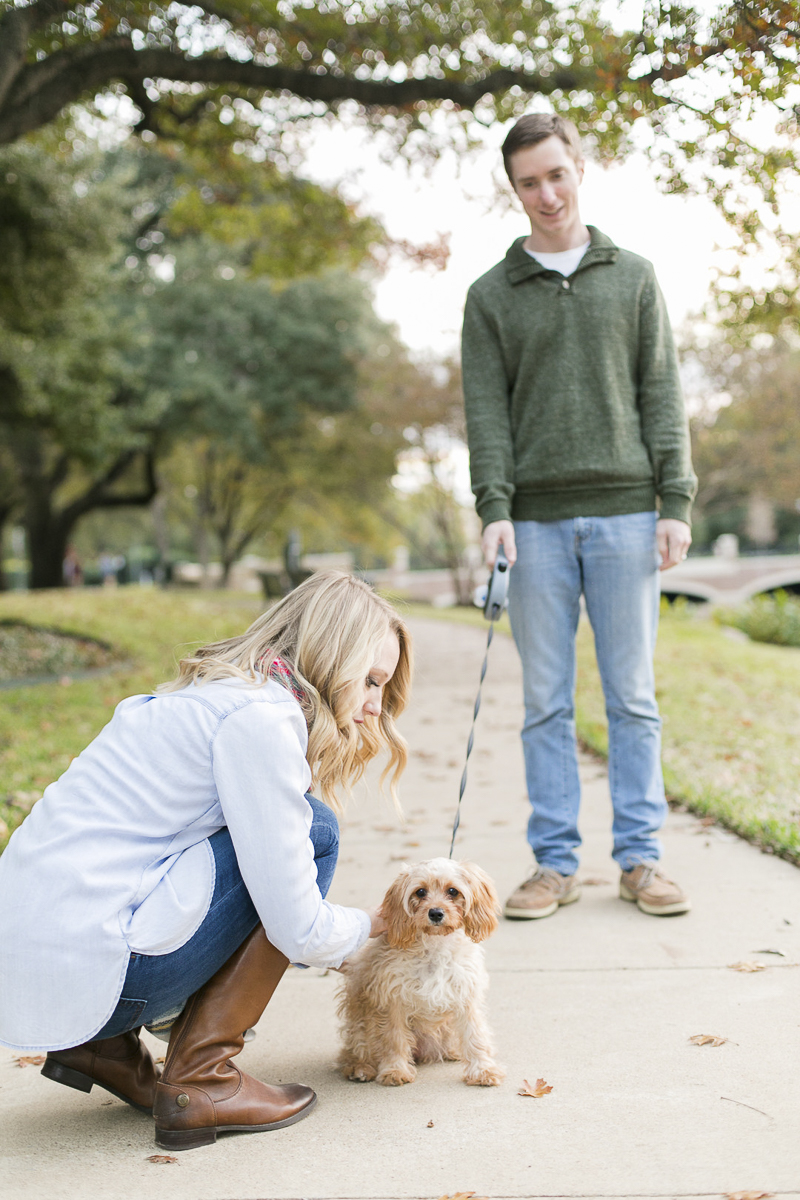 cute dog, ©Abbie Mae Photography Dallas lifestyle family and dog photography