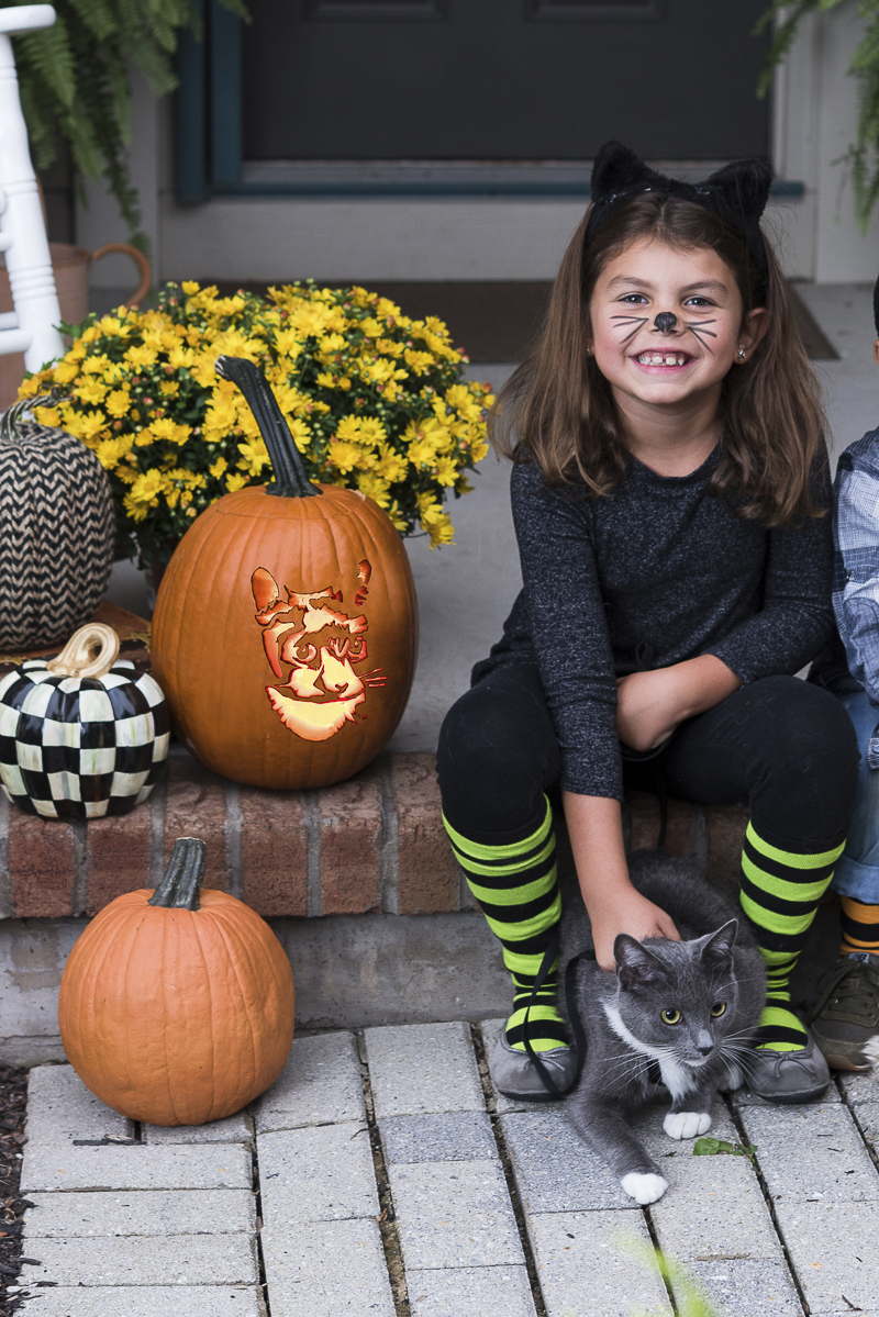 Howl-O-Ween, cute little girl and her cat | ©Alice G Patterson Photography | CNY lifestyle photography