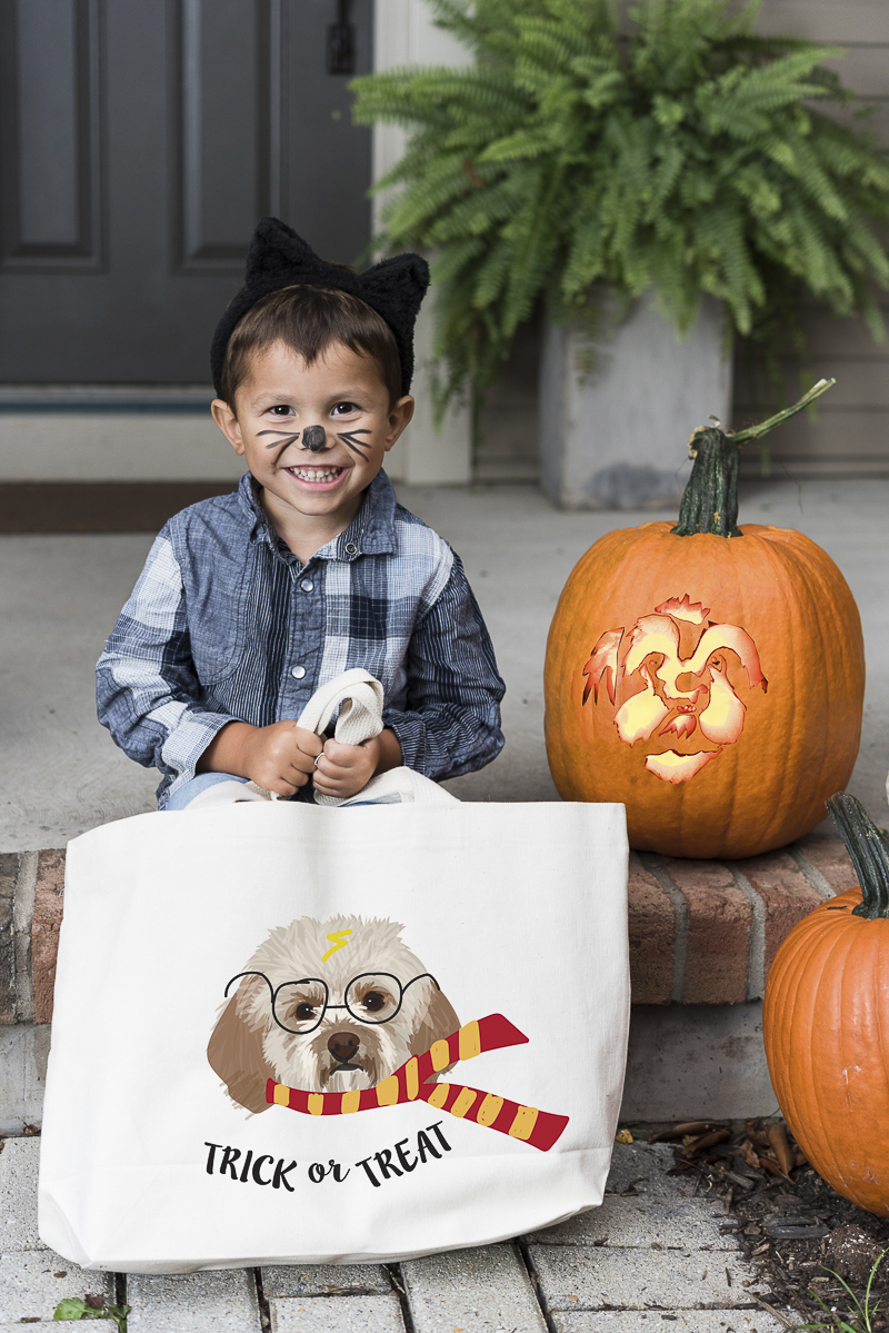 little boy with cat ears and whiskers holding adorable trick or treat bag from Noble Friends, ©Alice G Patterson Photography | Central New York photographer