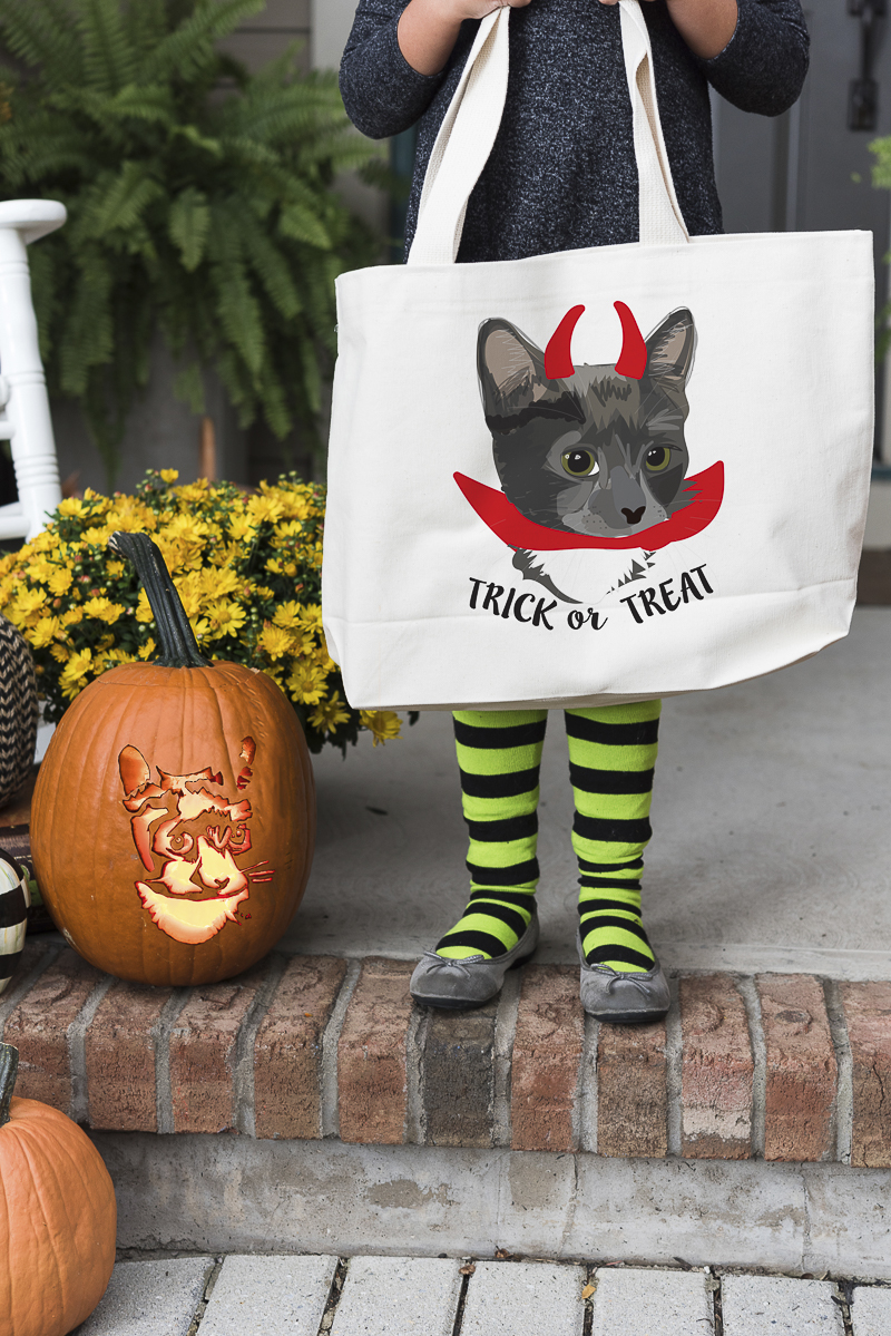 Noble Friends trick or treat bag, custom pet portraits | ©Alice G Patterson Photography,