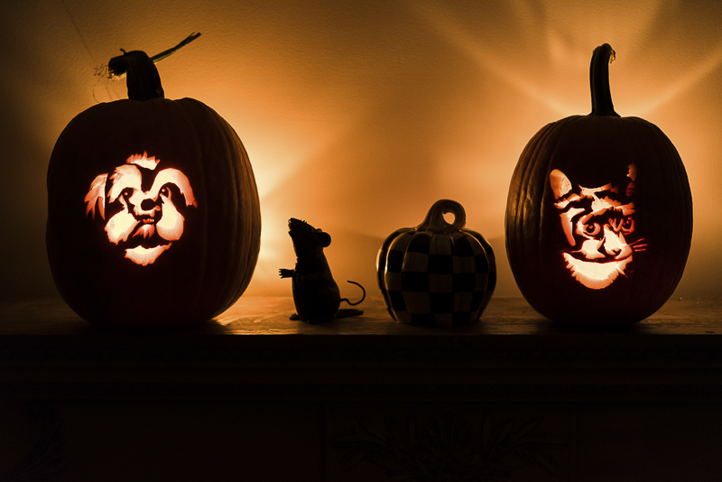 Howl-O-Ween pumpkin stencils from Noble Friends