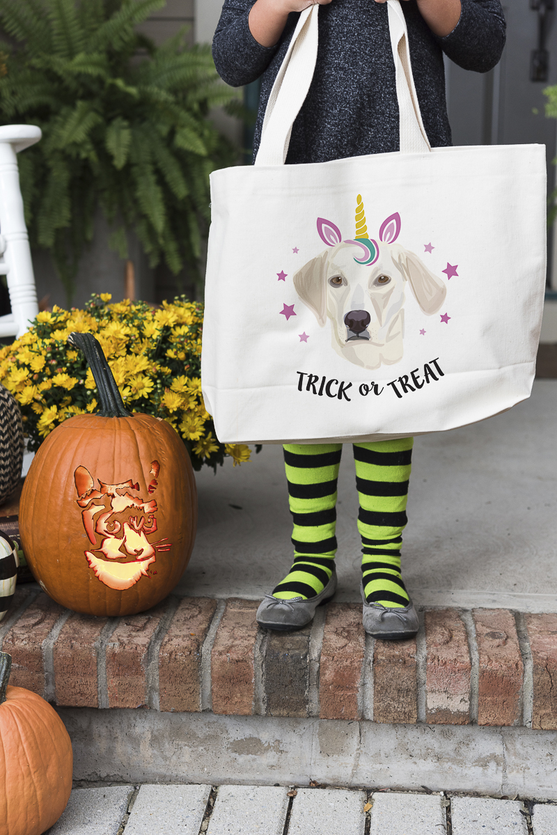 Noble Friends personalized pet portraits, trick or treat bag, dog in unicorn costume, Howl-O-Ween ©Alice G Patterson Photography