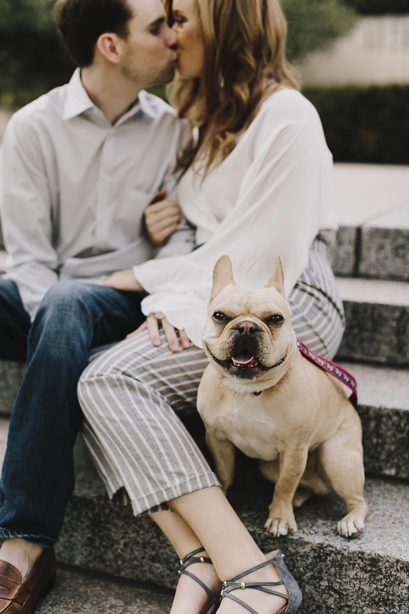 Happy French Bulldog, dog sitting next to couple on steps, ©Alyssa Barletter Photography | dog-friendly engagement photos