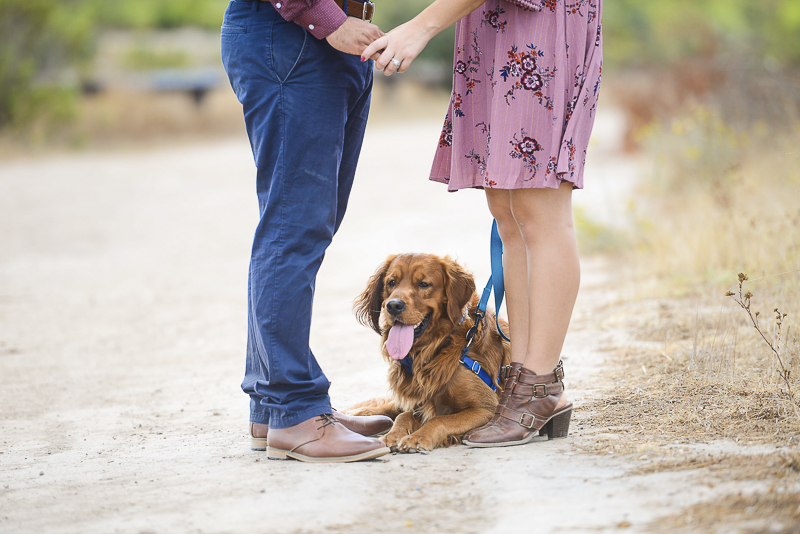 couple holding hands with dog between them, ©CR Photography | Santee, CA dog-friendly engagement pictures
