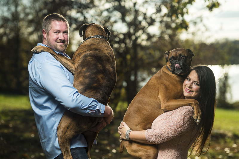 people and dogs, couple holding their large dogs, ©Fuller Photography