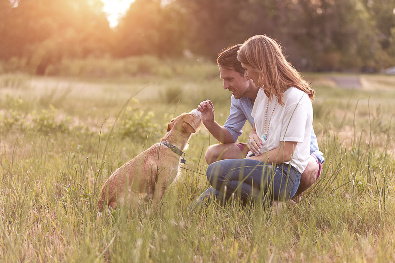 engagement pictures with dog, Colorado dog-friendly engagement photos, ©Good Morrow Photography