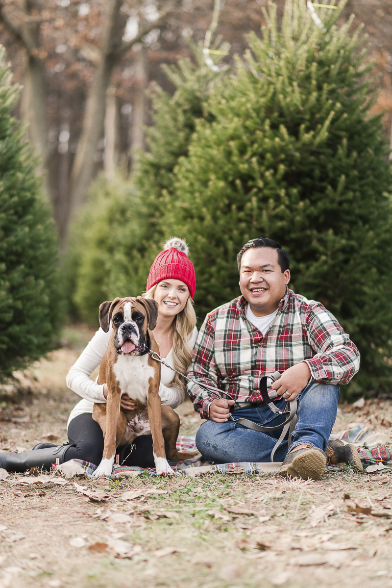 © Britney Clause Photography | outdoor family holiday photos with a dog, dog-friendly holiday photography session in a Christmas Tree farm