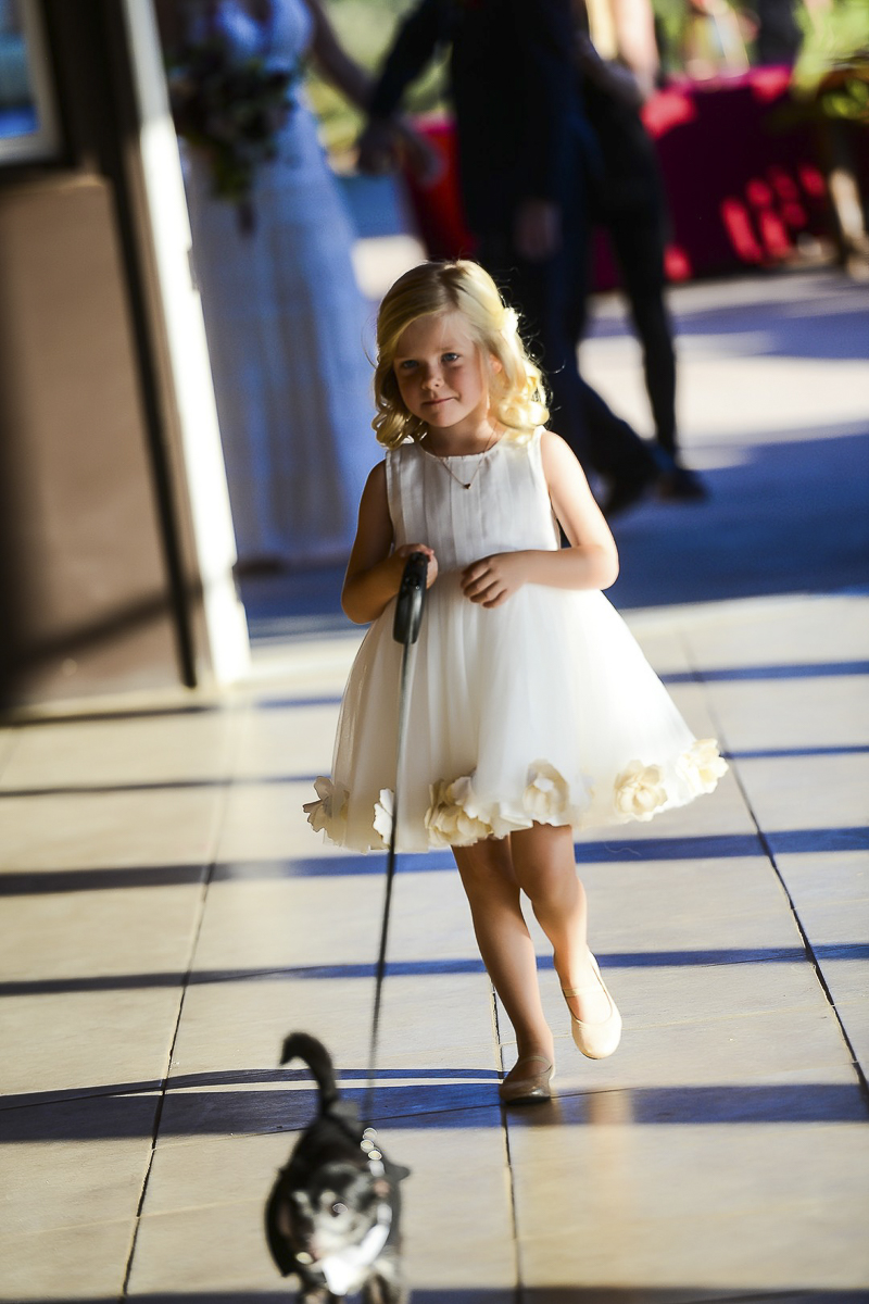 cute flower girl walking Chihuahua down the aisle, ©CR Photography, dog-friendly wedding