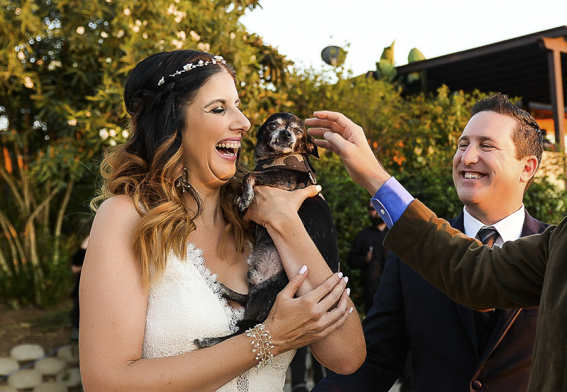 bride holding her Chihuahua | ©CR Photography, dog-friendly wedding