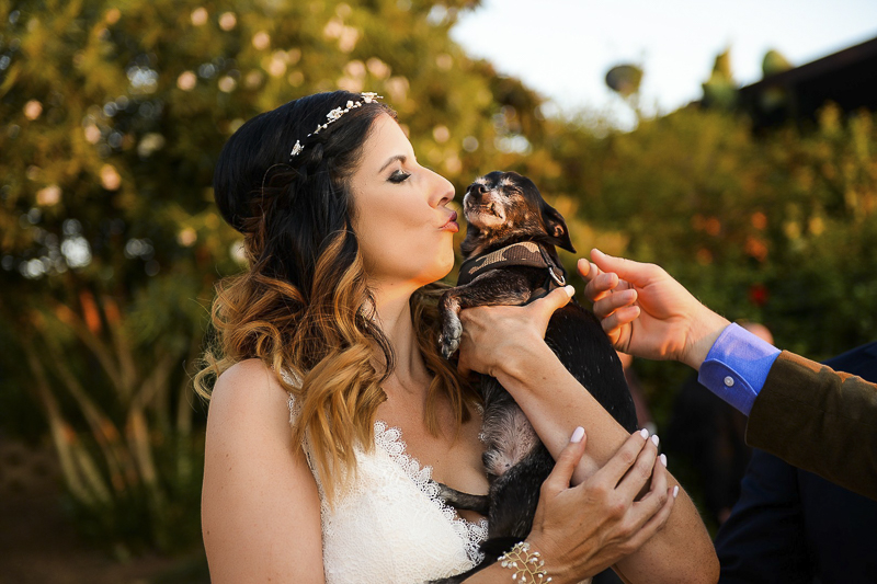 bride kissing her small dog at her wedding | ©CR Photography, dog-friendly wedding