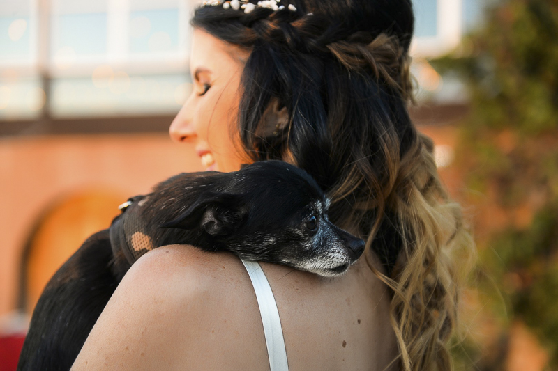 bride and her dog, love between dogs and people | ©CR Photography, dog-friendly wedding
