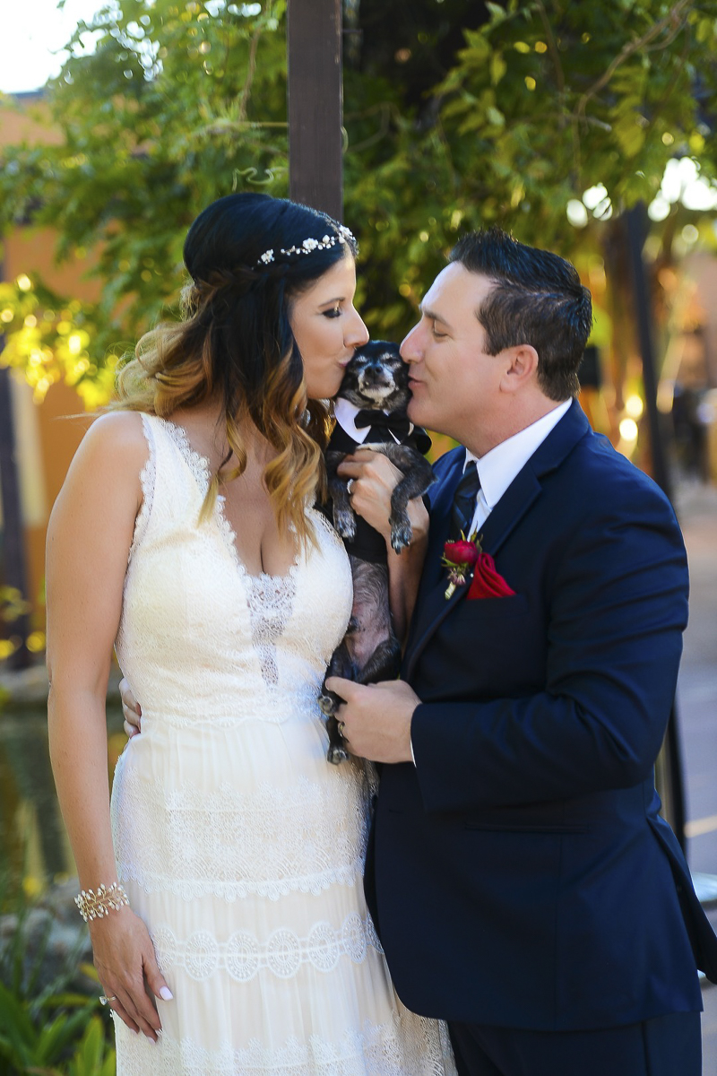 bride and groom kissing their dog, ©CR Photography, dog-friendly wedding