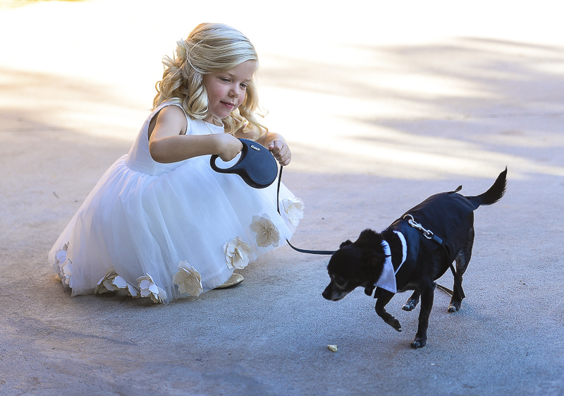 adorable young blond girl in white dress and dog ring bearer | ©CR Photography, dog-friendly wedding