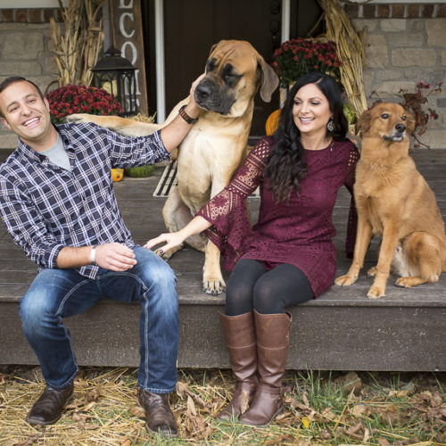 Happy Tails:  Sebastian the Mixed Breed & Hooch the English Mastiff
