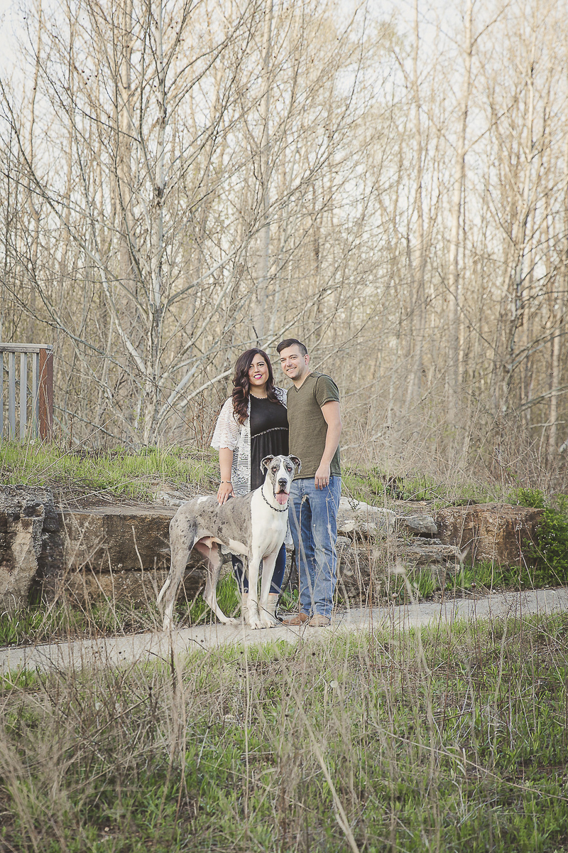 couple and their Great Dane, ©Irish Eyes Photography dog friendly engagement photos, Wentzville, MO