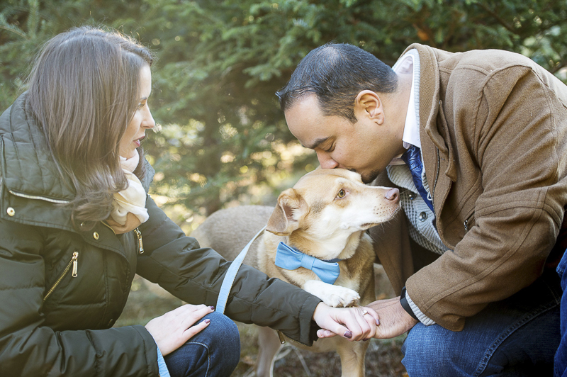 ©Julia Jane Studios, CT dog friendly winter engagement photos