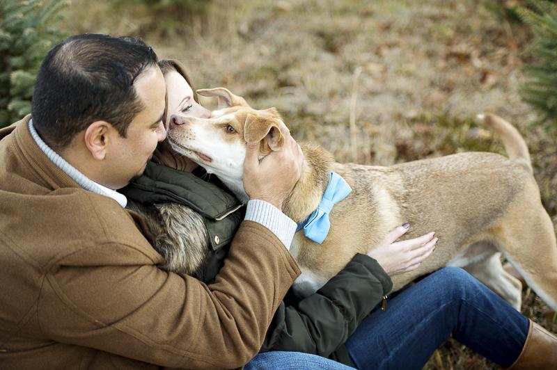 man's best friend, bond between dogs and humans, ©Julia Jane Studios, CT dog friendly winter engagement photos