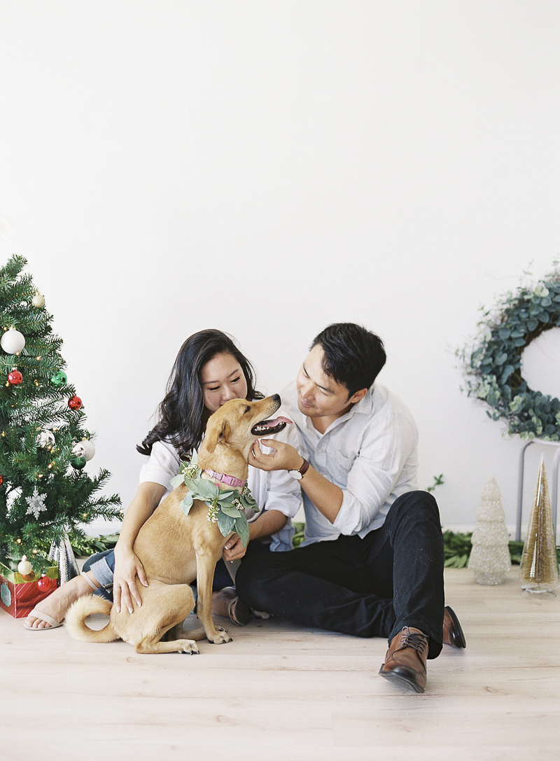 holiday photos of a couple and their dog, ©Stephanie Gan Photography | Studio holiday photos with a dog