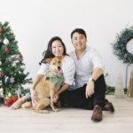 Happy Tails:  Nala the Formosan Mountain Dog mix