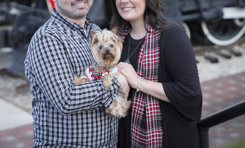 Holiday family portraits with a Yorkie