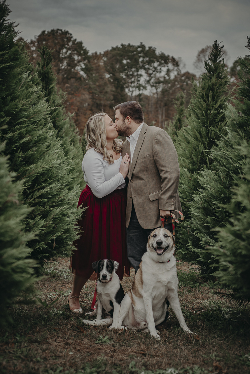 ©Nathalia Frykman Photography | dog-friendly holiday family photo ideas