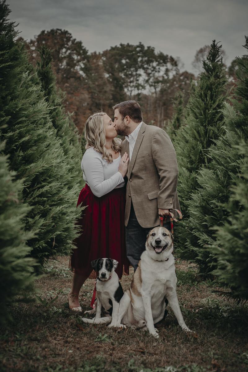 ©Nathalia Frykman Photography | dog-friendly holiday family photo ideas