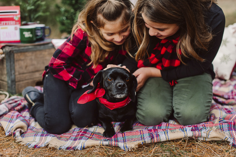 girls and their dog, Christmas card ideas for families with dogs, ©Delirament Designs