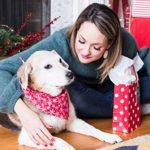 Last Minute Gift Ideas for the Dog Obsessed