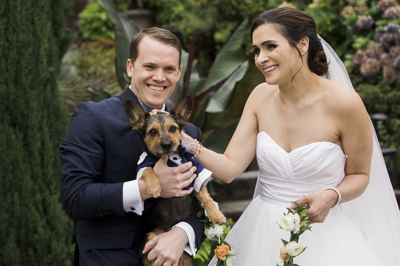 groom and dog in matching tuxedos, bride petting dog, ©Stephanie Cristalli Photography | dog ring bearer, wedding photos with dogs