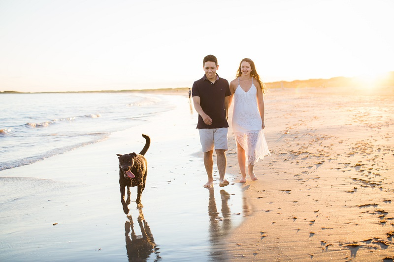dog-friendly beach engagement session, ©Trish Kemp Photography, Westerly, Rhode Island