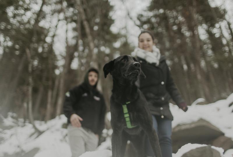 snowy engagement photos with a dog, black lab mix | ©Belle La Vie Images