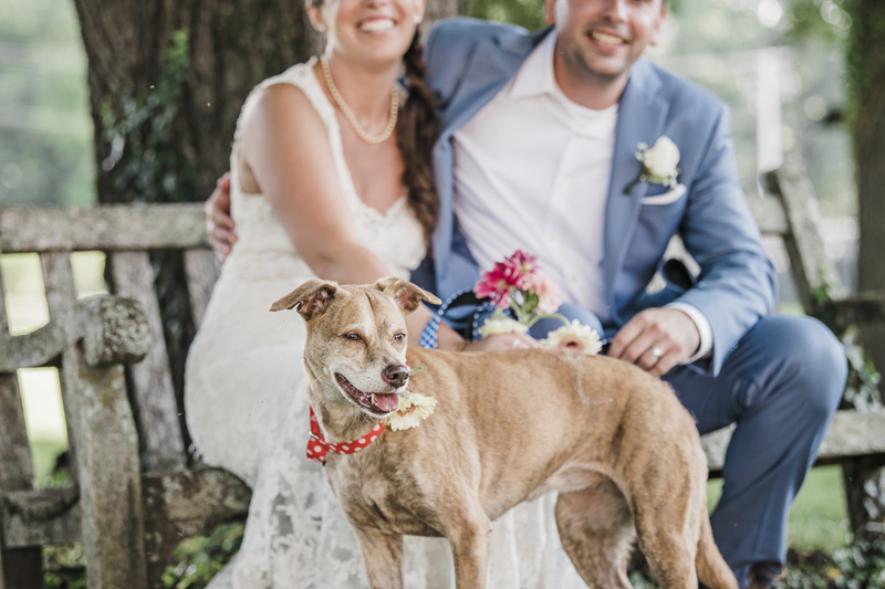Feist Terrier mix, dog flower girl, bride, groom and their dog | ©Landrum Photography