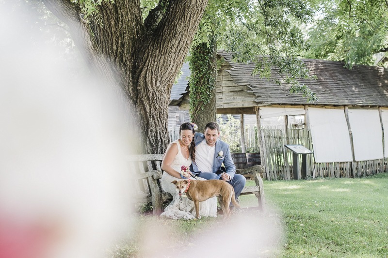 dog in a wedding, wedding photos with a dog