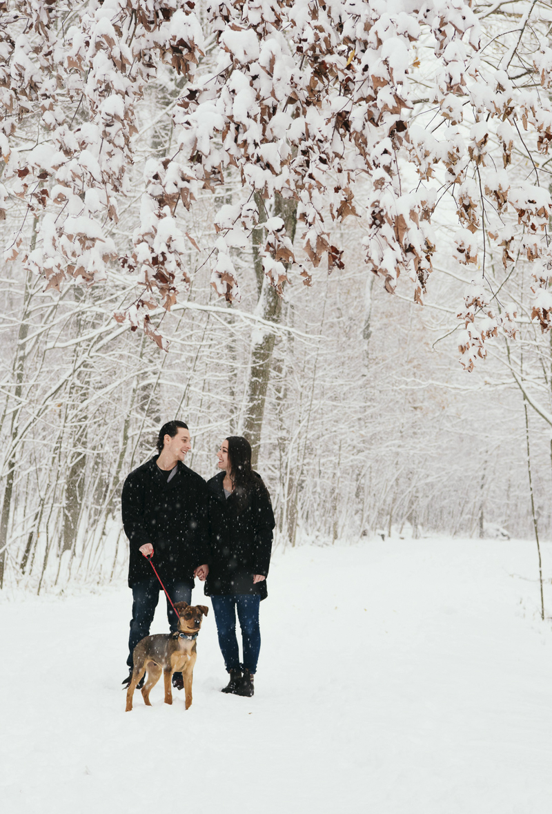 couple and their puppy standing near treeline on snowy day, ©Madison Robertson Photography | Kingston, ON, dog-friendly winter family photos with puppy