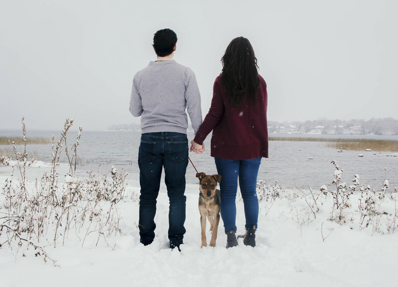 couple standing in snow looking over body of water, dog looking back at photographer | ©Madison Robertson Photography | Kingston, ON, winter family photos with puppy