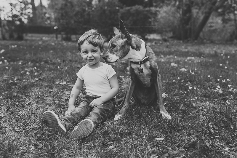 toddler boy sitting with senior Pit Bull-boxer mix | ©Nicole Maddalone Photography