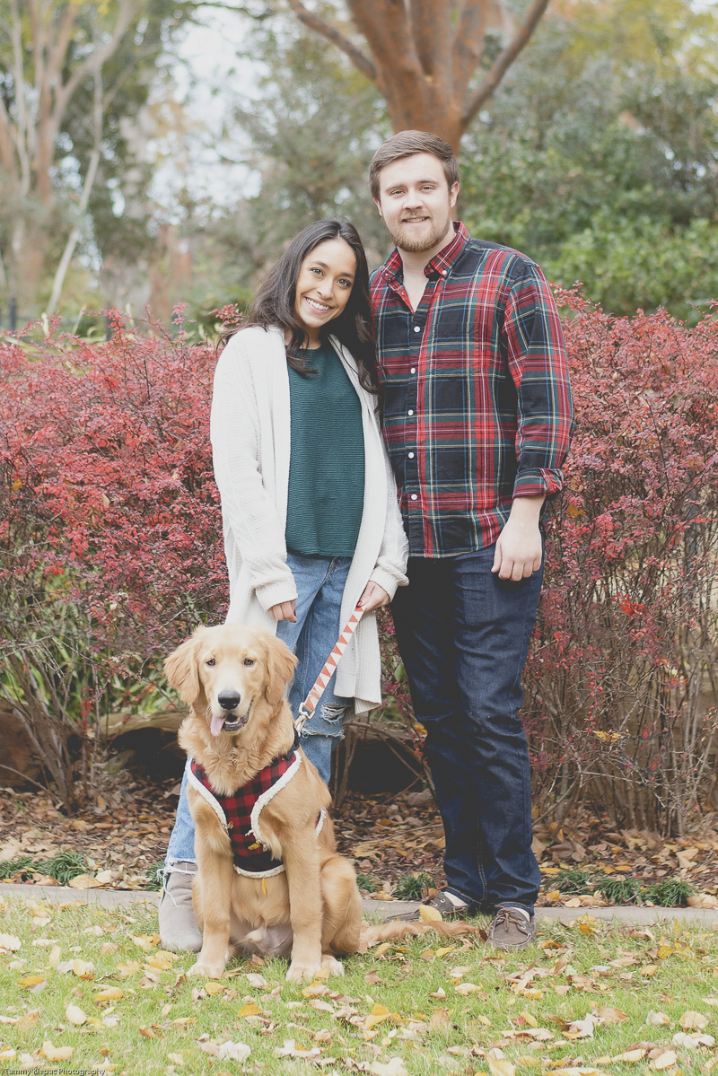 Golden Retriever wearing buffalo plaid harness, family photos with a dog ©Tammy Klepac Photography
