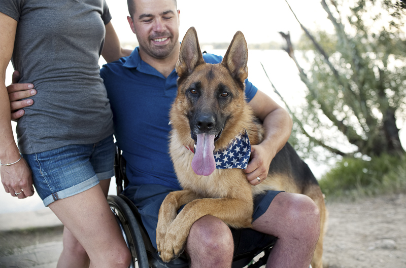 German Shepherd in man's lap, outdoor family photos with a dog ©Good Morrow Photography