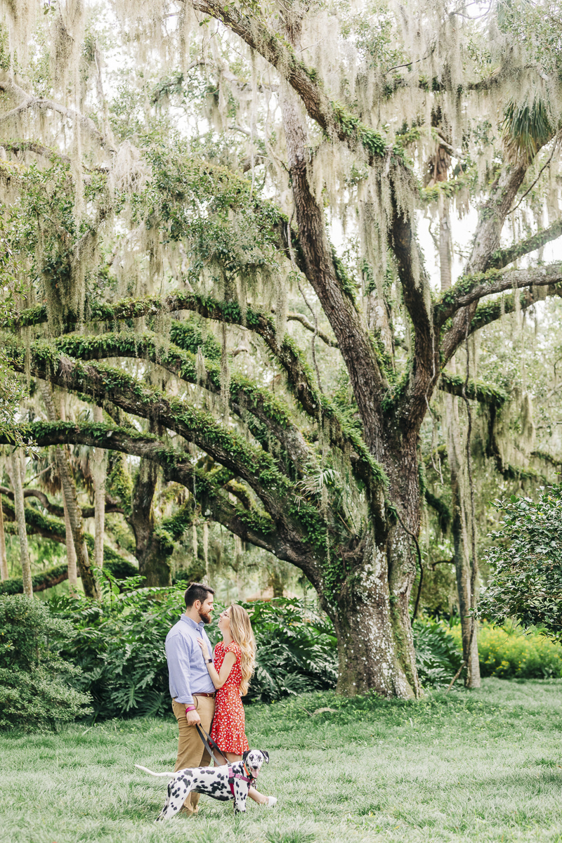 ©Kenzie Rae Photography | Dalmatian and humans in front of old oak tree, Washington Oaks State Park, Florida