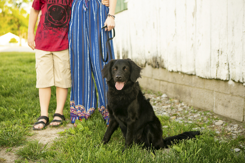handsome teen dog and his family, ©Mandy Whitley Photography | Nashville puppy portraits